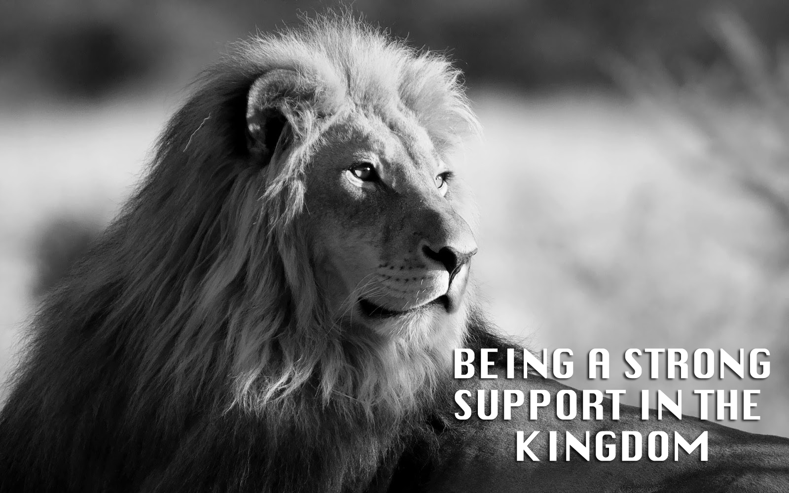 Being A Strong Support in the Kingdom